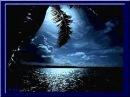 Voce 'e notte - Sal Da Vinci