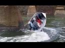 Аварии Моторных лодок на рыбалке | Необычная Рыбалка