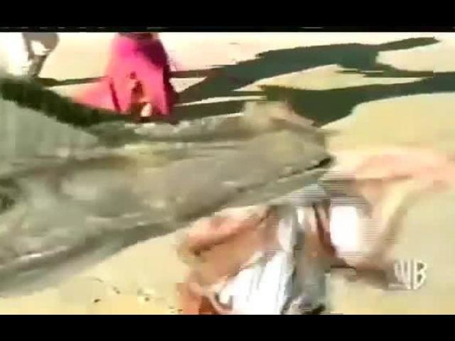 Видео к сериалу «Затерянный мир» (1999 – 2002): Промо-ролик