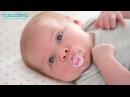 07 О пользе и вреде пустышек для здоровья детских зубов Натадент
