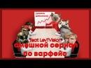 СМЕШНОЙ СЕРИАЛ В WARFACE feat LevTVision