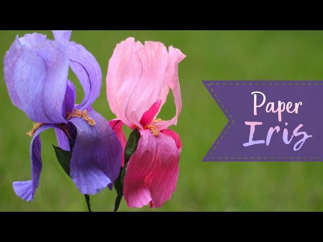 How To Make A Crepe Paper Iris!