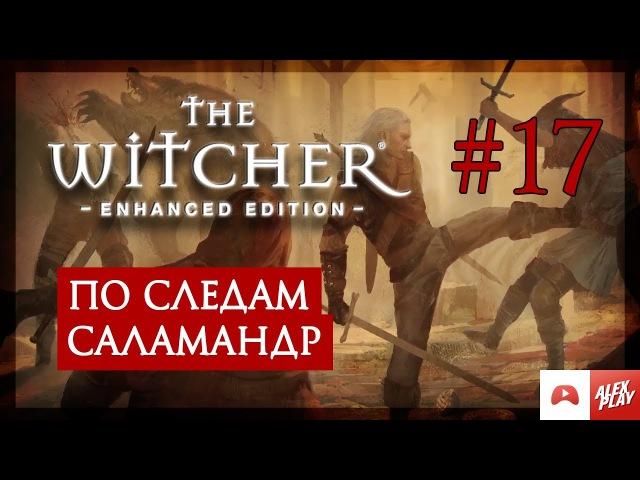 The Witcher | Ведьмак. Прохождение. 17. По следам саламандр.