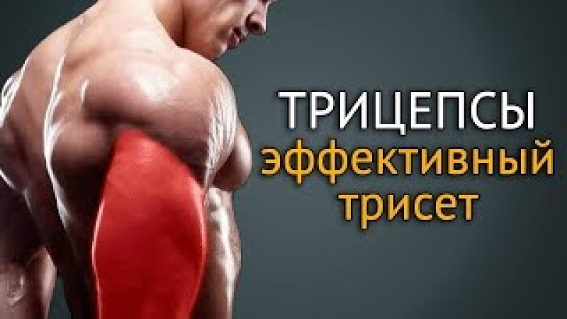 Как накачать трицепс: упражнения на трицепс с гантелями