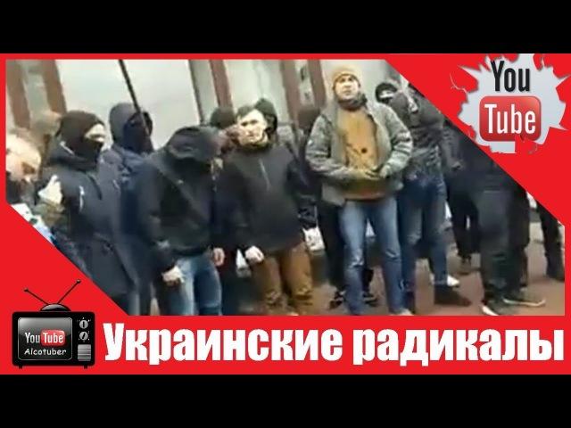 Украинские радикалы устроили погром и пригрозили поджечь разгромленное здание Россотрудничества