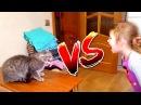 Bad Kid VS Bad Kat 🐱 Ребёнок ПРОТИВ КОТА ЗЛОЙ КОТ! ВЕРСУС БАТЛ/VERSUS