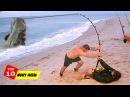 Video Câu Cá Khủng Được Hàng Triệu Lượt Chia Sẻ Trên Mạng Xã Hội