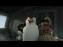 «Мадагаскар 2» на экранах мира в 2008 году!