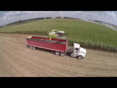 Chopping Corn Silage in Berne Indiana at Next Generation's Dairy