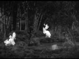 A Midsummer Night's Dream (1935)