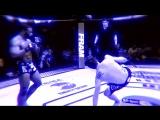 Отбитый ебанат/ UFC low kick