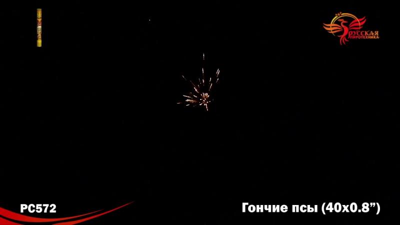 """РС572 Римская свеча """"Гончие псы"""""""