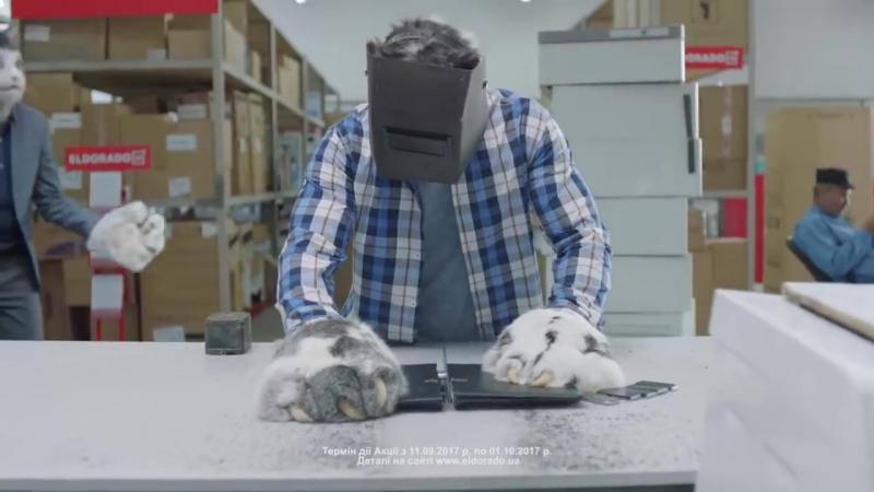 Ёшкін кіт Костя не техніку- ЦІНИ. Чиста розстрочка в Ельдорадо! Розпиляй ціни до 25 платежів