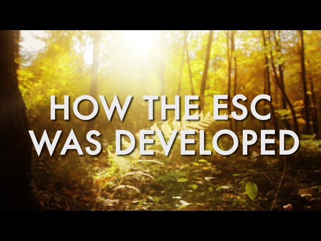 How the ESC was Developed - with Dr. Dain Heer