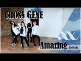 A.N.Y.O. CROSS GENE (