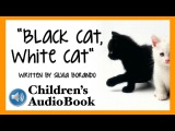 Childrens Audiobook: Black Cat, White Cat by Silvia Borando