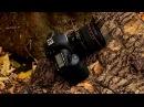 Обзор широкоугольного объектива Canon EF 24mm f/1.4L II USM