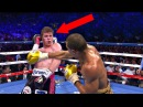 8 Boxers That Defy The Laws Of Physics