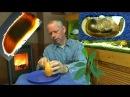 Mango Samen einpflanzen, die gelbe Mango