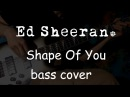 Ed Sheeran - Shape Of You bass cover everyday play169