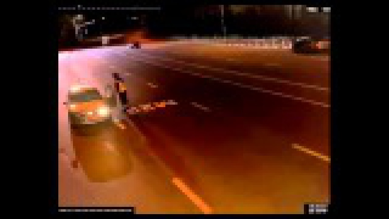 Нападение стаи волков на пост ДПС трасса М23