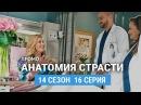 Анатомия страсти 14 сезон 16 серия Промо на русском