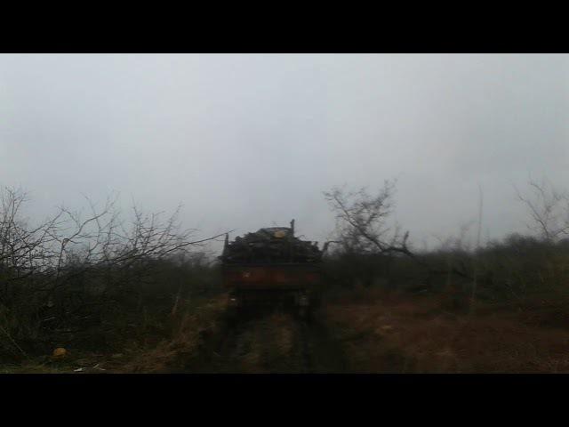 Юмз і мтз 80 таскают прицеп з дровами по болоте