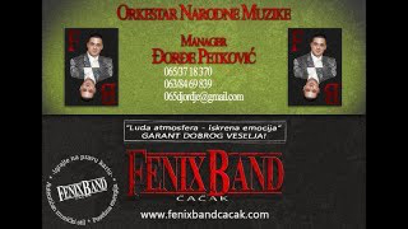 DJORDJE PETKOVIC I FENIX BAND CACAK-DESPOTOVAC VOZD RESAVICA-SLIKE U OKU-PARTY EVENT