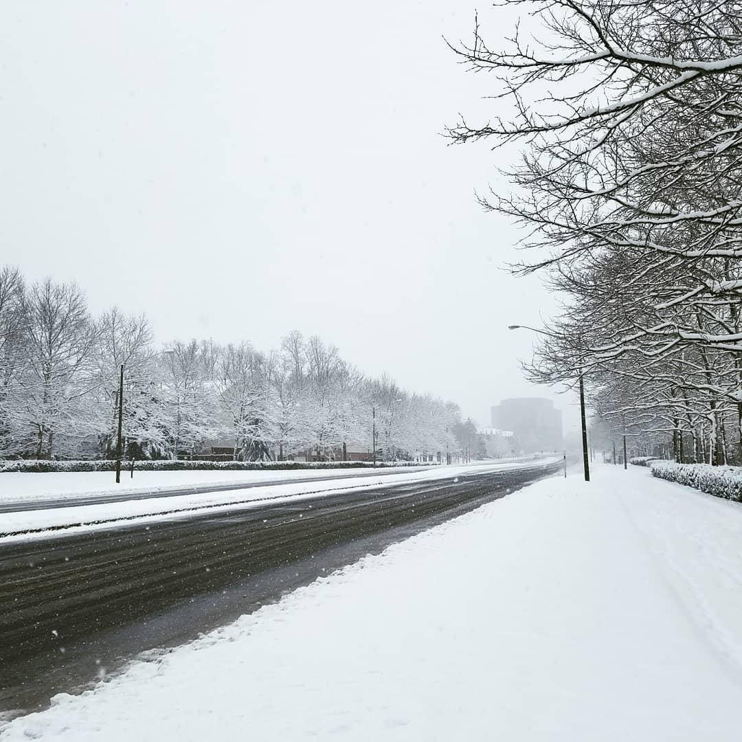 Снегопад Фэрфакс штат Вирджиния 🇺🇸 США 21 март 2018