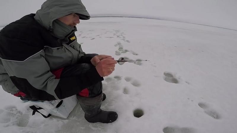 Раздразнить плотву безнасадкой- техника ловли