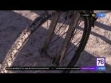 Как себя чувствуют велосипедисты зимой? Программа