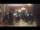 Оркестр Классика. Штраус. Голубой Дунай