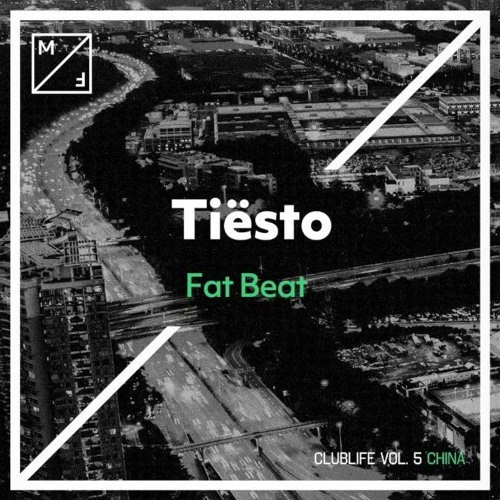 Tiesto - Fat Beat (David Puentez Remix)