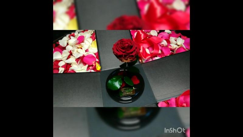 Роза в колбе от Mayflor