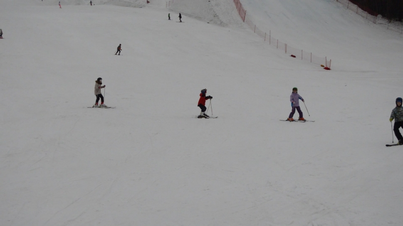 Ромин первый в жизни спуск, второе занятие на лыжах )