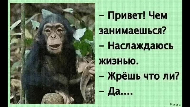 Doc201219129_459511285.mp4