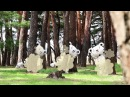 (KOR) 마스코트 이야기 7 The life of PyeongChang 2018 Mascots