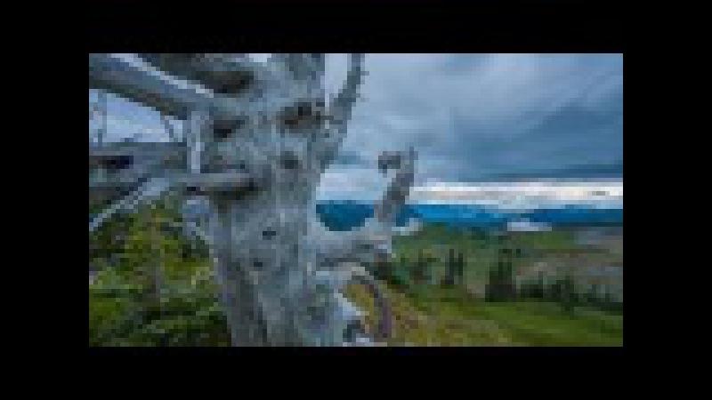 Красивый Вашингтон - сериал о природе штата Вашингтон, США. Эпизод 1