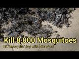 Mosquito trap DIY 8,000 mosquito kill reduce ZIKA DENGUE MALARIA MaxxAir Fan CO2