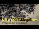 Mosquito trap DIY 8,000 mosquito kill reduce ZIKA DENGUE MALARIA MaxxAir Fan CO2