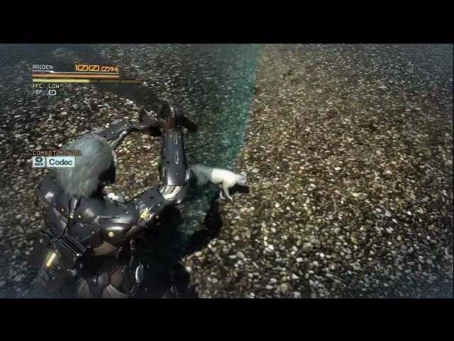 Metal Gear Rising: Revengeance - The Invincible Ninja Cat