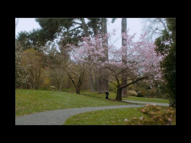 Yumi Zouma December Official Video