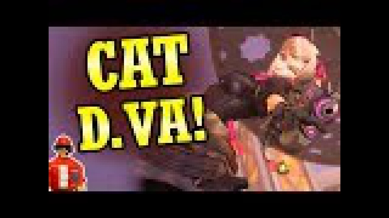 It's Finally Here! Black Cat D.Va Skin! (Overwatch News)