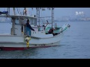 Япония - смертоносная рыба фугу и город роботов. Мир наизнанку - 2 серия, 9 сезон