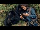 Дайан Фосси Секреты в тумане 1 серия. Защитница горилл 2017
