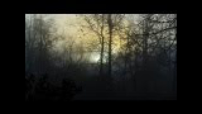 Lustre - Of Strength and Solace Part 1 (2012)