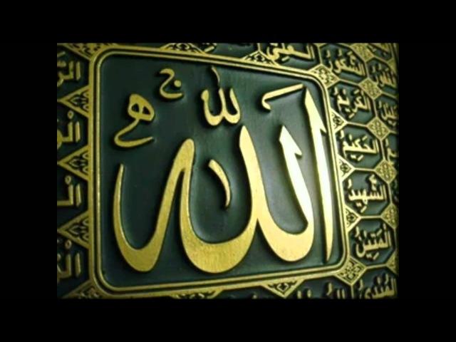ZIKIR-Allahu-Lailahaillallah-Hasbi Rabbi Jallallah