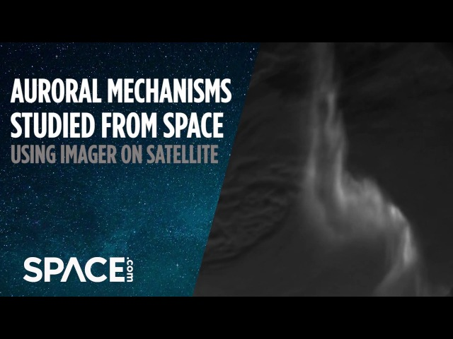 Auroral Mechanisms Studied from Space