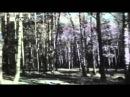 Анатолий Полотно - У вечного огня