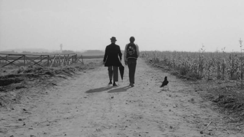 Птицы большие и малые / Uccellacci e uccellini (1966) Пьер Паоло Пазолини / Pier Paolo Pasolini